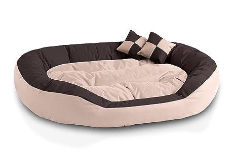BedDog 4en1 Saba Beige/Marron XXL Aprox. 110x80cm colchón para Perro, 7 Colores, Cama, sofá, Cesta para Perro