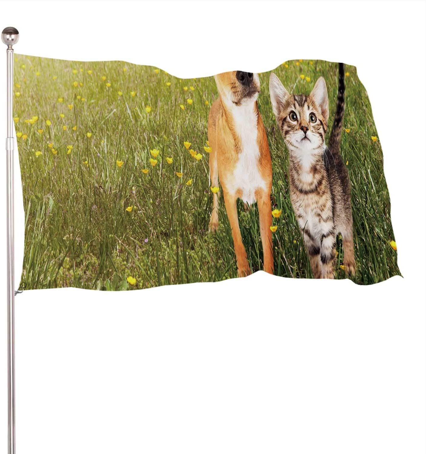 Dxichy Cute Kitten and Puppy Together in a Field of Green Grass Yellow Wild Flowers with Copy Space,Banner Flags with Grommets for Decor Vivid Color and UV Fade Resistant 3x5 Ft