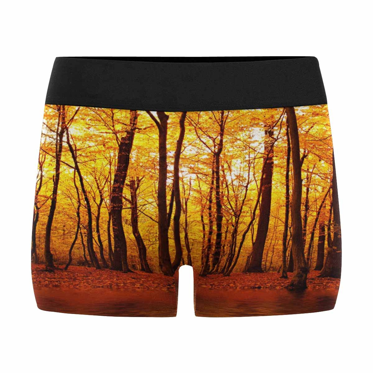 INTERESTPRINT Mens Boxer Briefs Underwear Lake in Autumn Forest Beautiful Nature XS-3XL