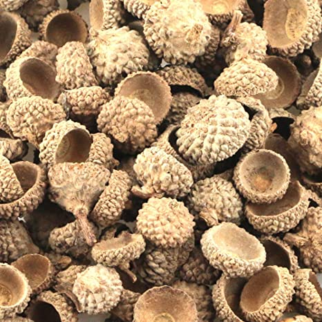 Oruuum 350g Natural Dried Acorn Caps for Christmas Thanksgiving Festival Crafting Decoration DIY Home Party Wedding Decor