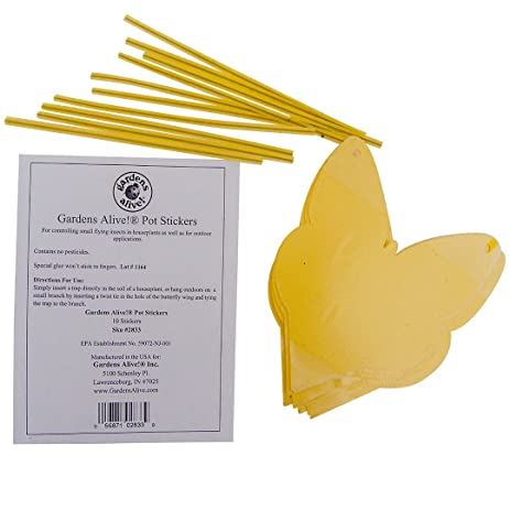 Pot stickers for small flying insects pkg of 10 traps