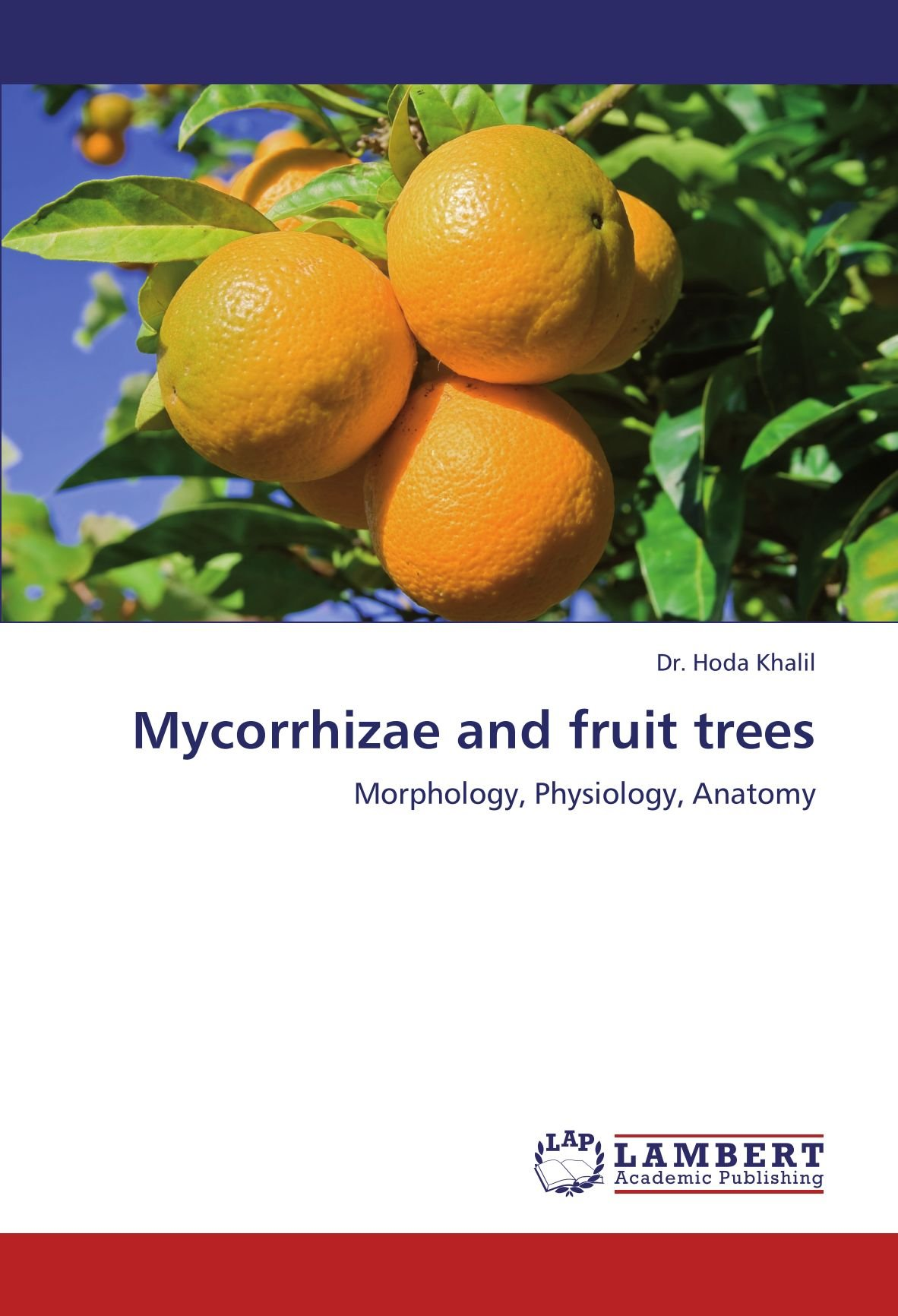 Mycorrhizae And Fruit Trees Morphology Physiology Anatomy Hoda