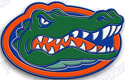 Personalized Patch Gator Football Name Patch Sew on patch Embroidered patch patch Iron on patch Applique patch