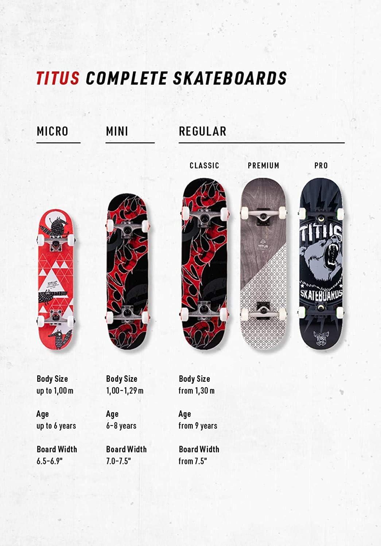 TITUS Triple Schranz Skateboard komplett Complete