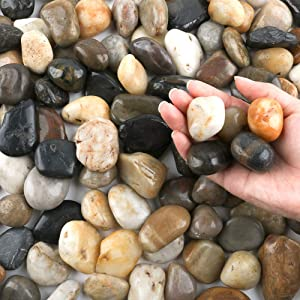 CJGQ 20 Pounds Pebbles for Plants 1-2 Inches Natural River Rocks, Garden Stone Outdoor