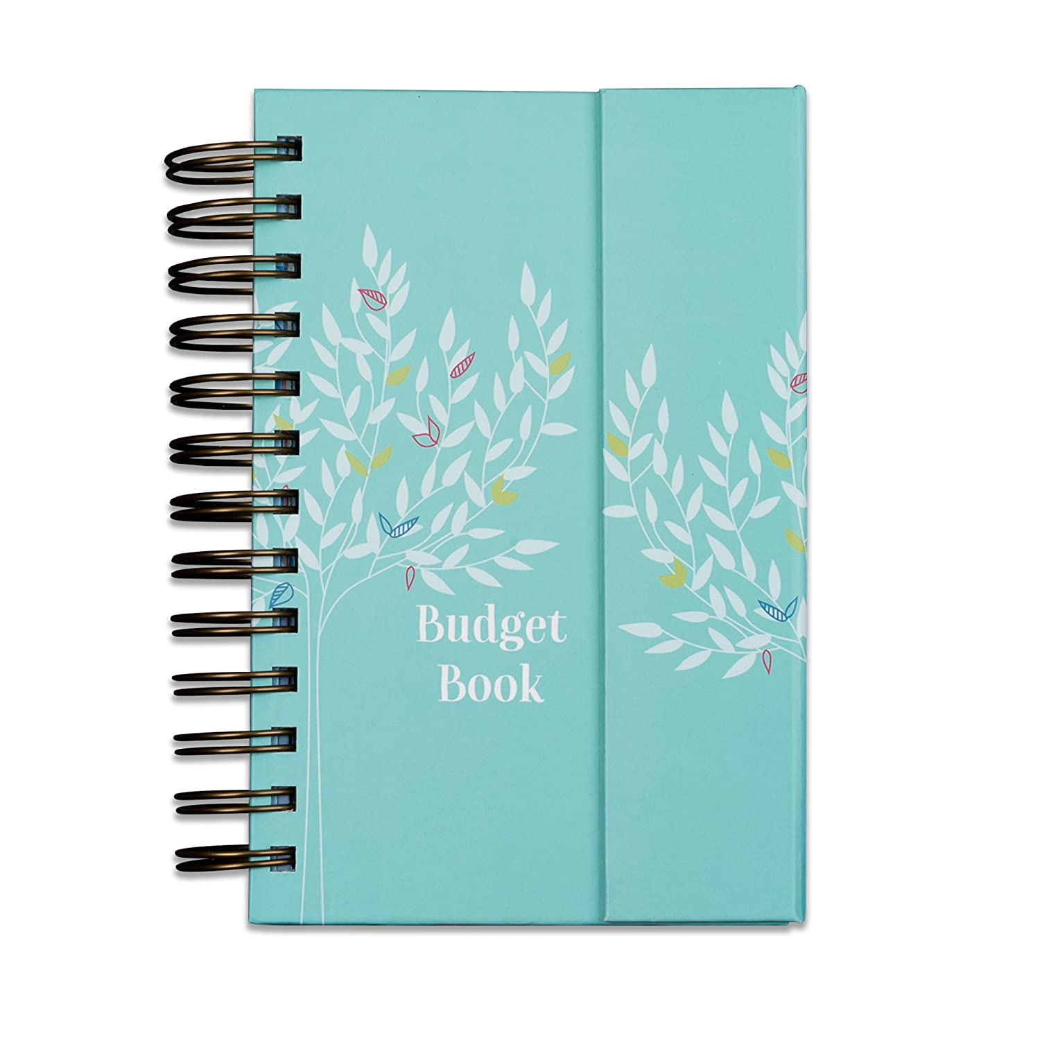 "Boxclever Press Budget Book. Monthly Bill Organizer & Budget Planner Accounts Book Keeps Track of finances, Household Expenses & Finance Tracker with Pockets (7"" x 5.3"" x 1.3"", Turquoise) BCBB."