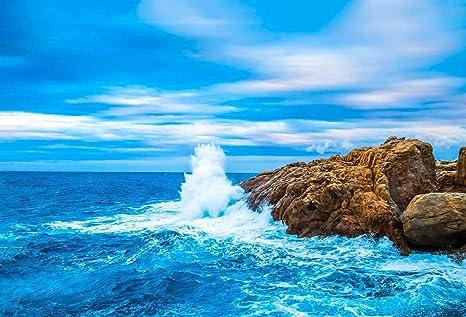 Amazon com : Beach Rocks Landscape Photo Studio Backdrop Sea Waves