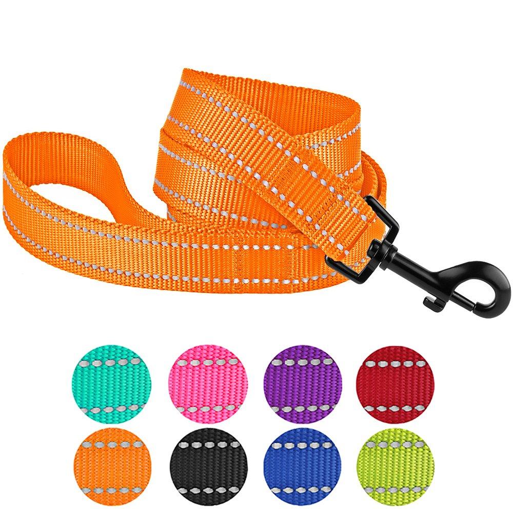 orange M orange M CollarDirect Nylon Dog Leash 5ft for Daily Outdoor Walking Running Training Heavy Duty Reflective Pet Leashes for Large, Medium & Small Dogs (M, orange)