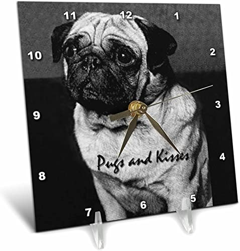 3dRose dc_251_1, Pugs and Kisses-Desk Clock, 6 by 6-inch, Multicolor
