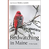 Birdwatching in Maine: A Site Guide