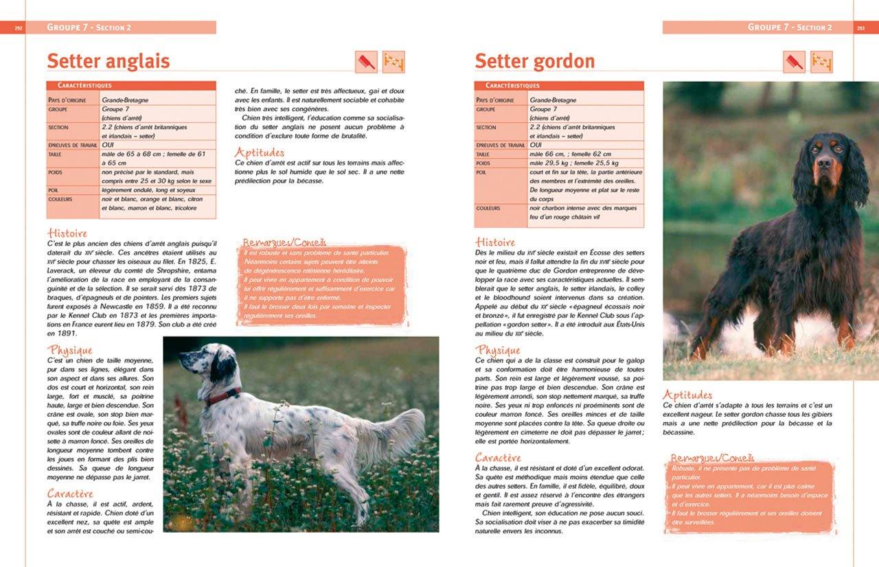 encyclopedie races de chiens