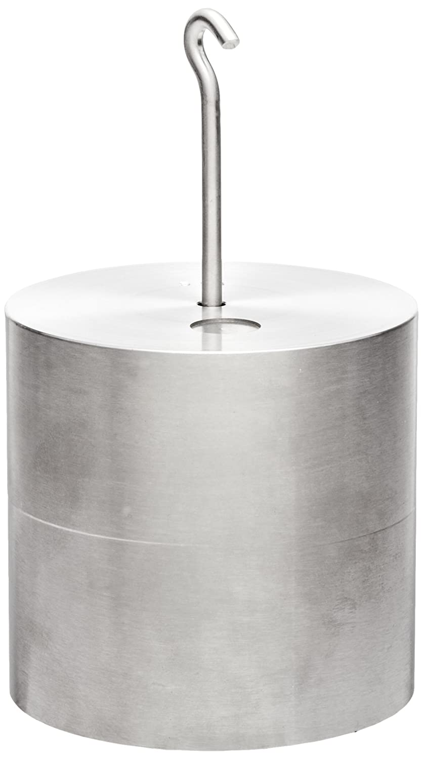 Rice Lake Stainless Steel ASTM Class 6 Hook Metric Individual Test Weight 5kg Mass