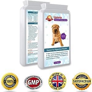Best Paw Nutrition - Probióticos para Perros Enzimas Digestivas ...