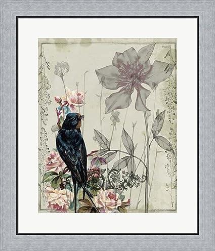 Amazon.com: Mauve Melody IV by Jennifer Goldberger Framed Art Print ...