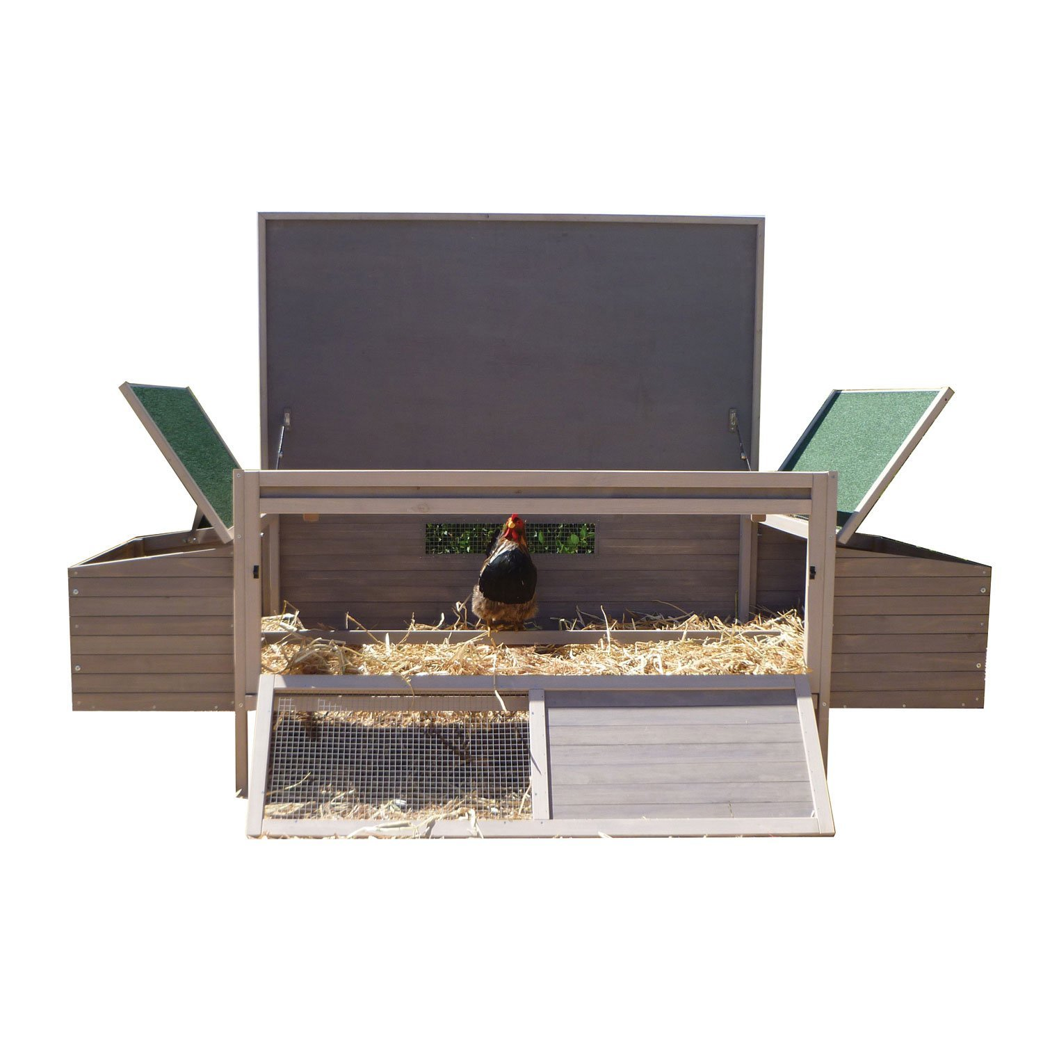 Precision Pet Products Hen Den Chicken Coop by Precision Pet Products