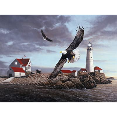 1000 PCS Adult Jigsaw Large Jigsaw Puzzle, Lighthouse and Eagle, Adult Decompression Child Educational Gift: Toys & Games
