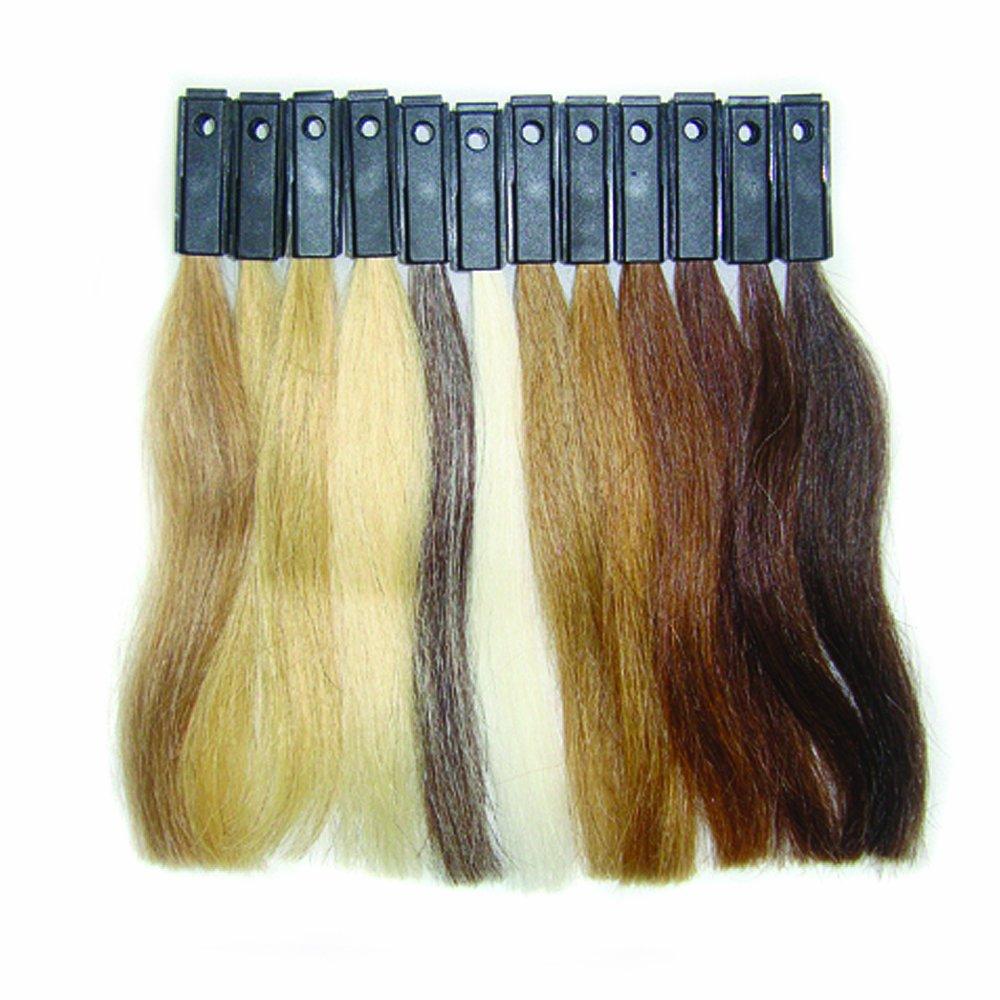 Amazon.com: HAIRART European Hair Practice Swatches 12 Color ...