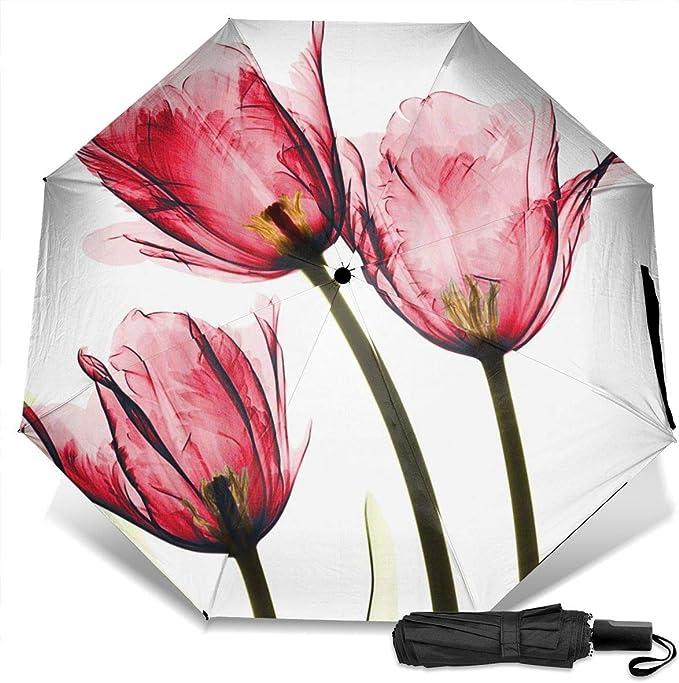 Nicokee - Paraguas de Viaje Compacto con diseño de Flores ...