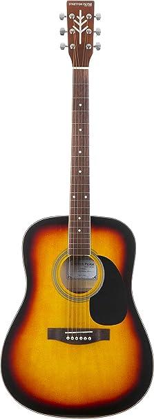 Stretton Payne Dreadnought - Guitarra acústica (tamaño completo, acero D1): Amazon.es: Instrumentos musicales