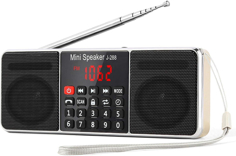 L-288 Radio portátil FM Am con Altavoz estéreo Bluetooth, Temporizador de Apagado, estación de Bloqueo, Tarjeta USB y TF y Reproductor de MP3 AUX, por PRUNUS(Oro)