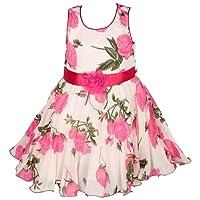 Wish Karo Baby Girl's Net Frock Dress