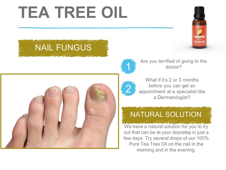 Amazon.com: Tea Tree Oil by AromaOils - Pure Therapeutic Grade ...