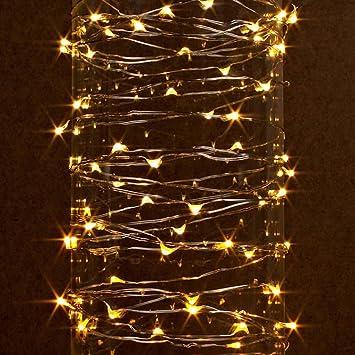 Amazon.com: Gerson 38624 - 60 Light 20' Silver Wire Warm White ...