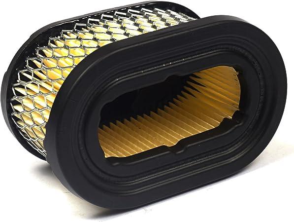 Briggs /& Stratton 697029 Oval Air Filter Cartridge