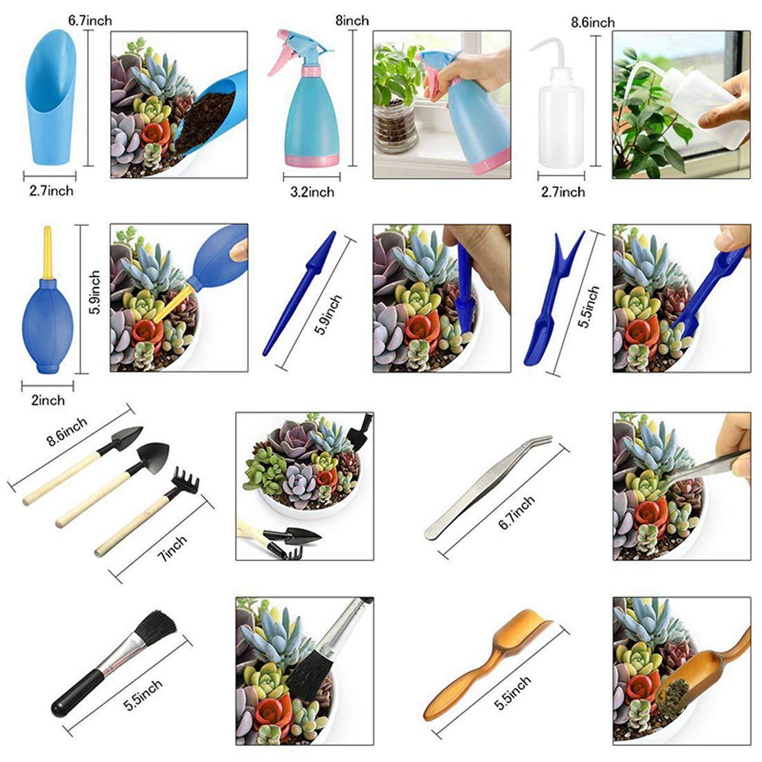 PANTINUE Succulent Garden Hand Tools Kit 14 Pieces Succulent Plants Tools Terrarium Kit