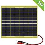 ECO-WORTHY - Panel Solar de epoxi (5 W, con Clip de batería para 12 V, Recarga, Camping, Autocaravana)