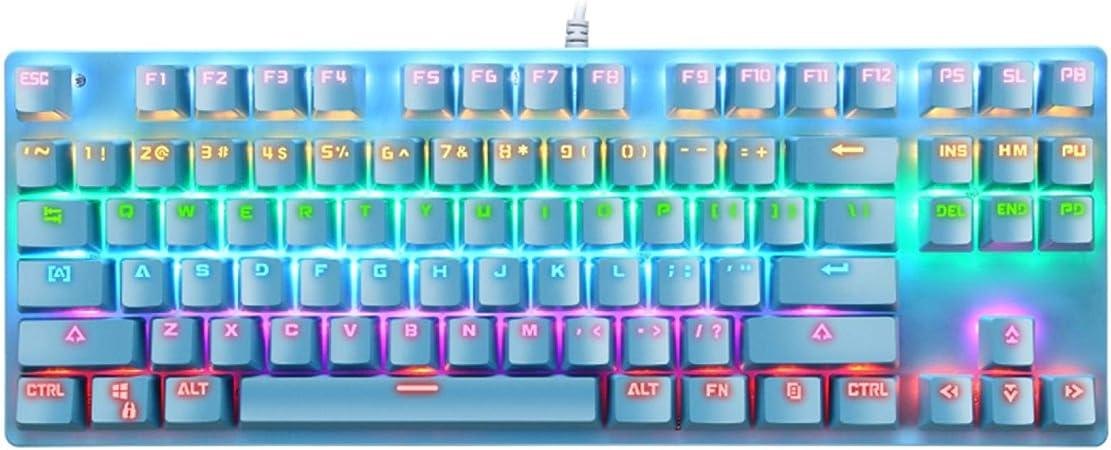 xiaoxioaguo Teclado mecánico para PC juego de escritura USB ...