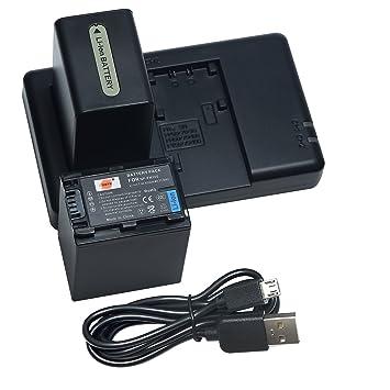 DSTE 2PCS NP-FH100(4300mAh/7.4V) Batería Cargador Kit para ...