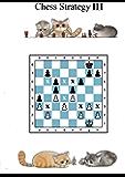 Chess strategy - Corso di strategia scacchistica parte 3
