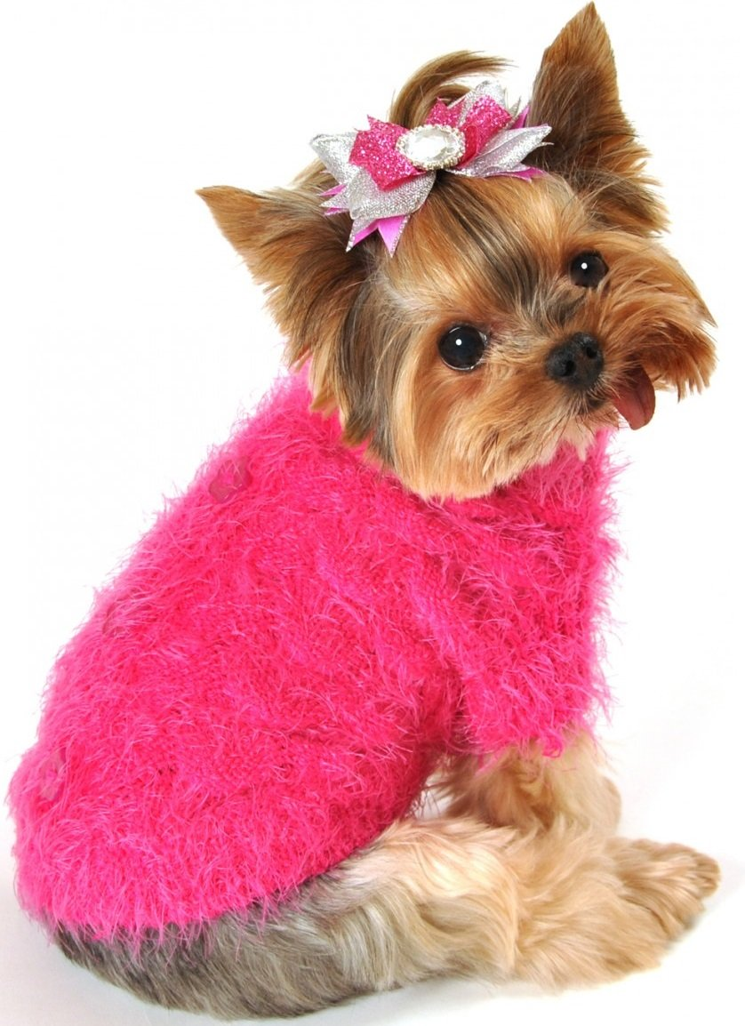 Hip Doggie Mohair Blossom Dog Sweater (Small)