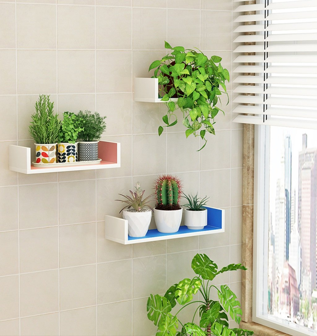 CSQ Indoor Wall Hangings, Pallet Shelf Bedroom Living Room Restaurant Kitchen Decoration Chlorophytum Potted Plants 3 Pieces Flower Shelf by Flowers and friends (Image #4)