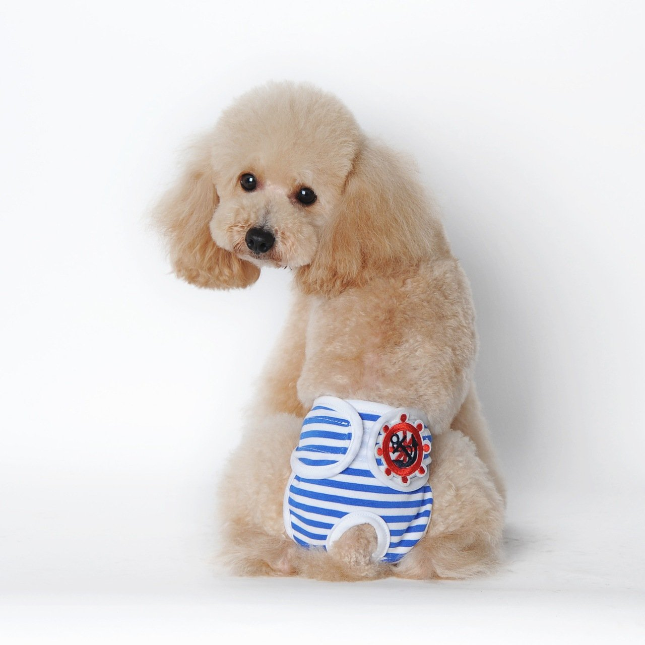 bluee XX-Large bluee XX-Large Dogs Diaper, Pet Dog Striped Physiological Sanitary Pants Diaper Dog Clothes Pants Female Dog Diapers Dog Striped Physiological Pants Pet Dog Health,bluee,XXL