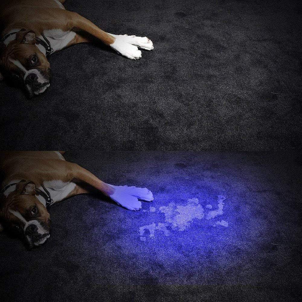 bater/ía no incluida OurLeeme Antorcha UV 2PCS LED Luz negra Linterna Antorcha ultravioleta Detector de manchas de orina para mascotas Buscar manchas LED Antorcha de aleaci/ón de aluminio