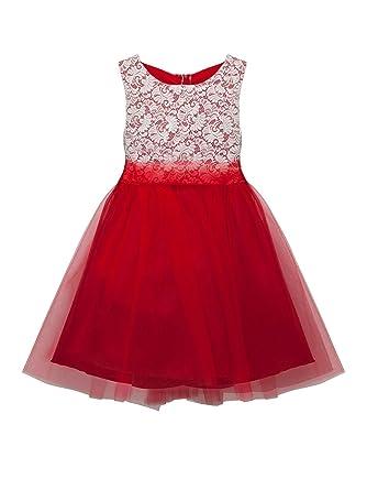 Amazon.com: Kid\'s Dream Big Girls Red Lace Tulle Plus Size Junior ...