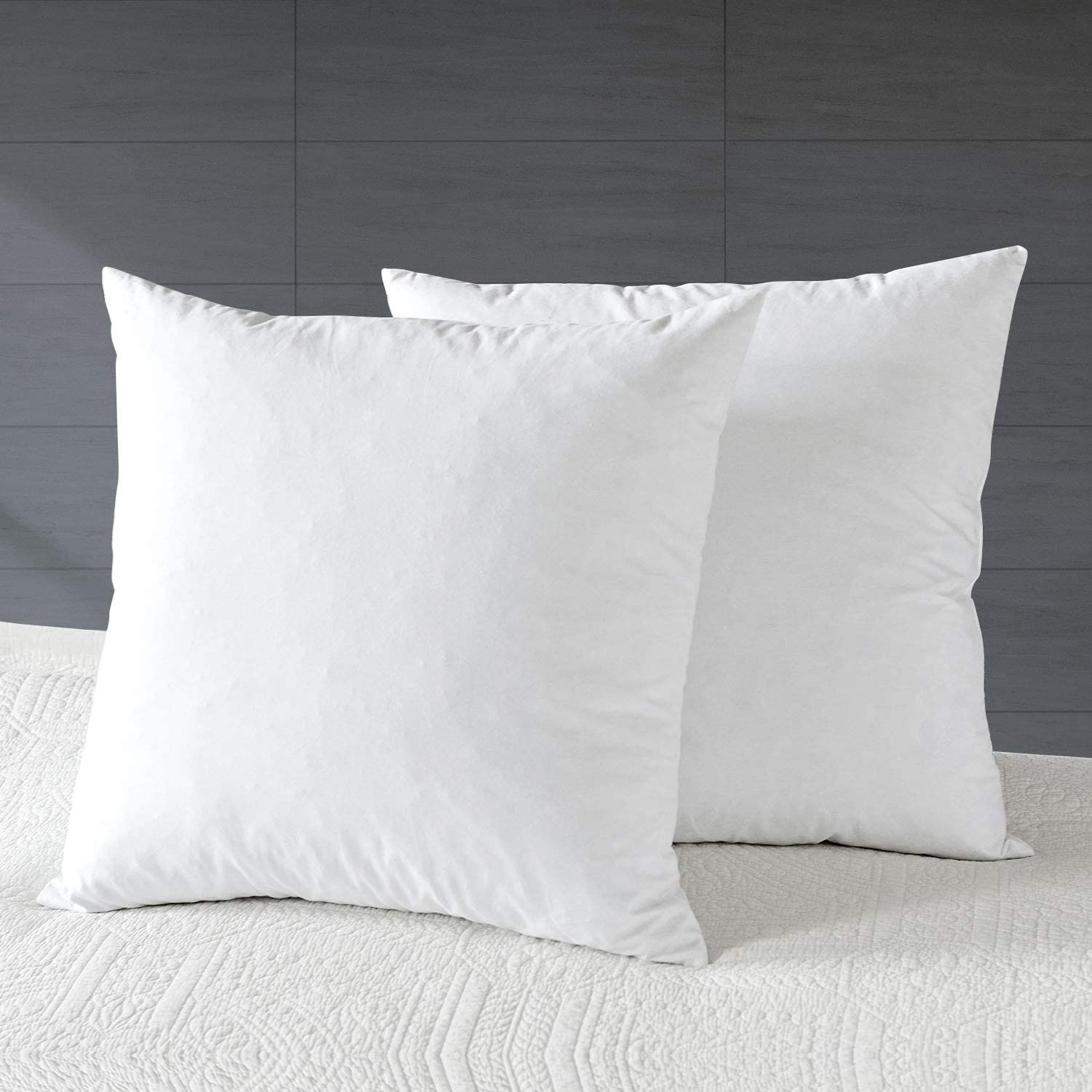 Amazon Com Apsmile Goose Down Feather Throw Pillow Inserts 2 Pack 16x16 Euro Square Decorative Pillow Inserts For Bed Sofa Couch White Kitchen Dining