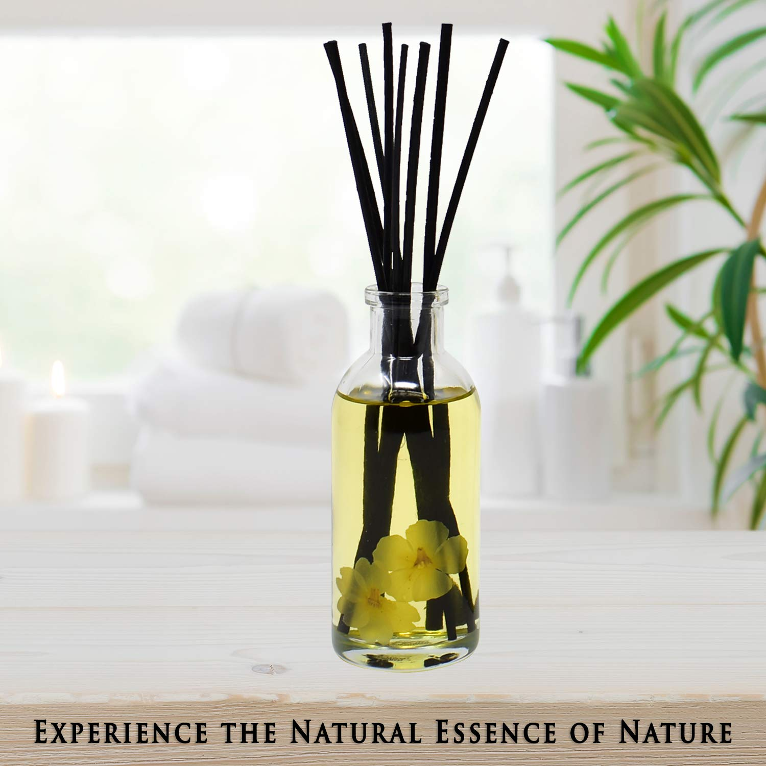Urban Naturals Citrus & Jasmine Reed Diffuser Scented Sticks Set | (Energy + Clarity) Mind & Body Aromatherapy Collection | Essential Oil Botanical Room Scent | Liquid Potpourri Alternative by Urban Naturals (Image #6)