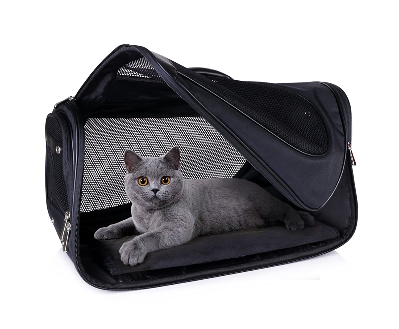 Amazon.com: Pet Carrier, Carrier, gato Carrier, petshome ...