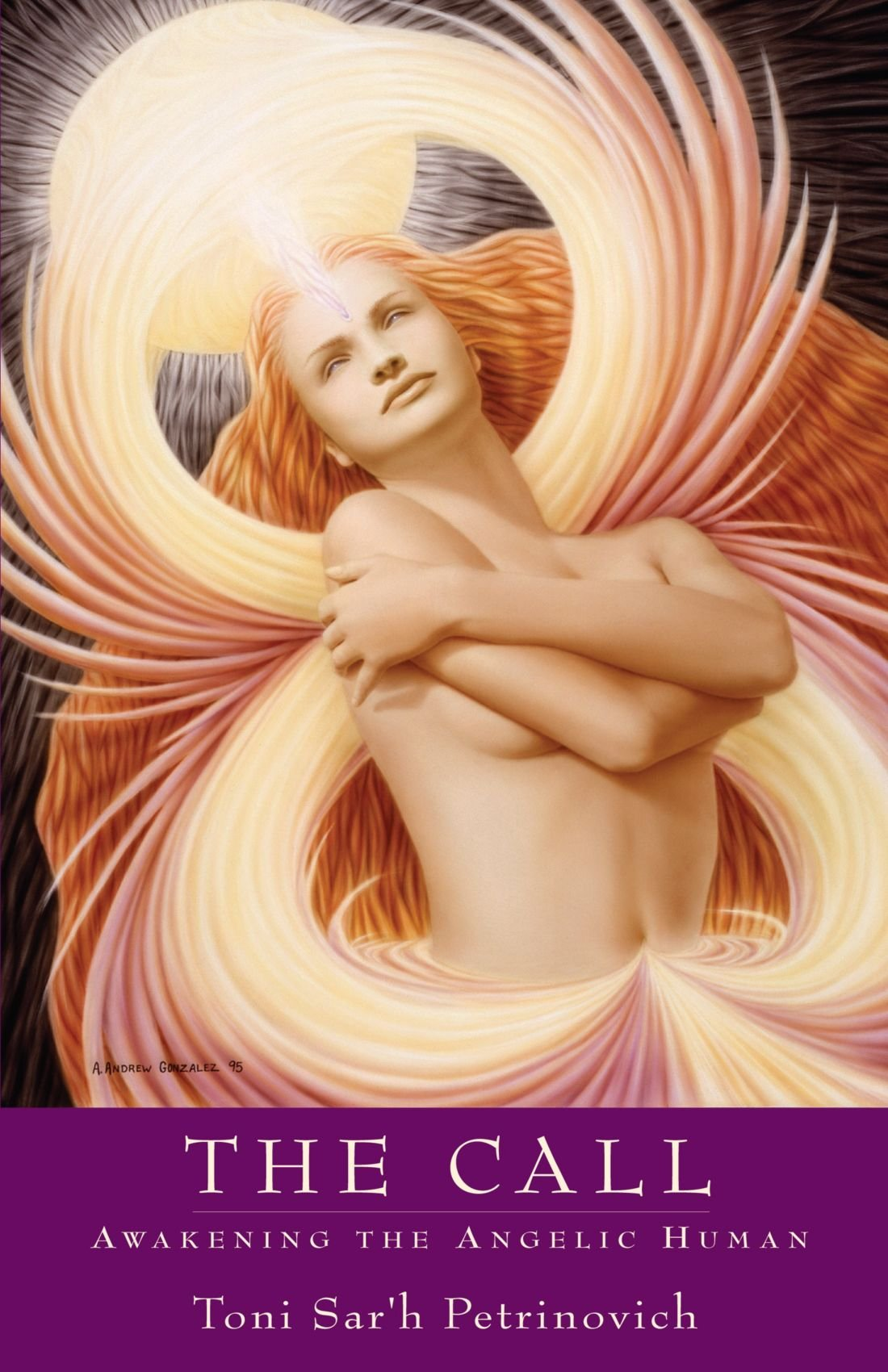 The Call: Awakening the Angelic Human ebook