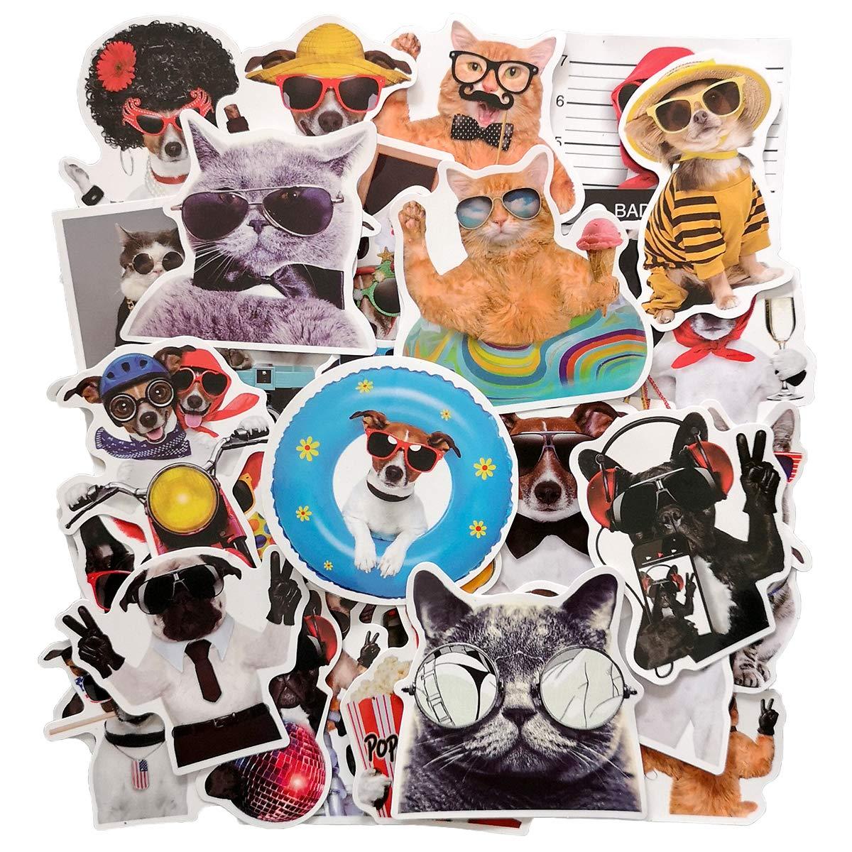 Stickers Calcos 38 un. Mascotas Origen U.S.A. (7Q1K5LXZ)