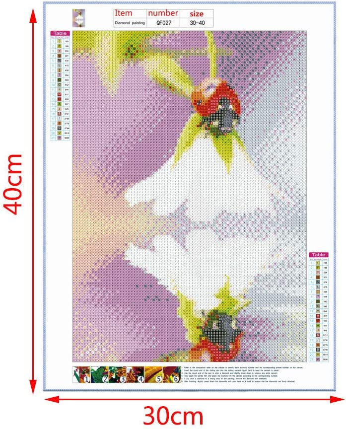 WENWING Ladybug DIY 5D Diamond Painting Kit Embroidery Pictures Arts Craft DIY Crystal Needlework Full Drill Rhinestone Kit Cross Stitch for Home Wall Decor
