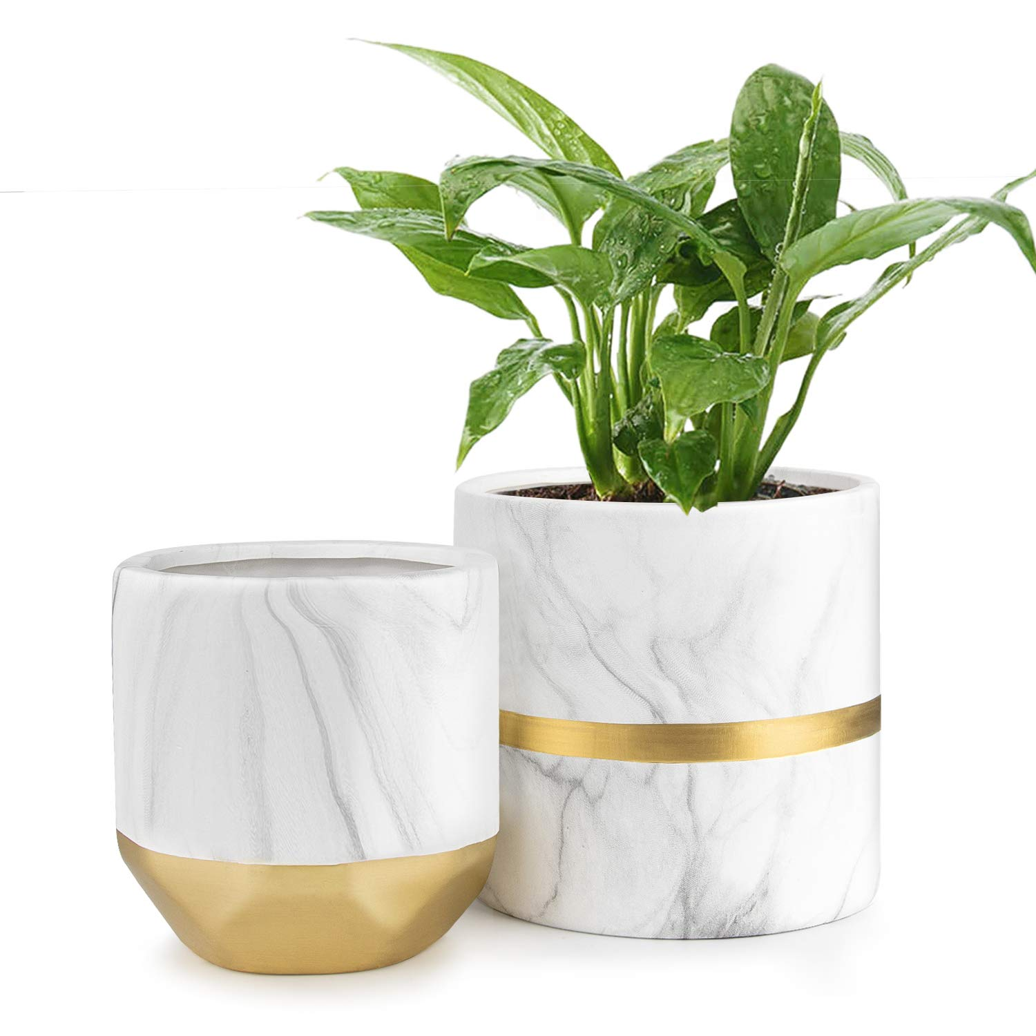 HOMENOTE White Ceramic Flower Pot Garden Planters 6'' Pack 2 Indoor, Plant Containers with Marble Texture and Gold Detailing by HOMENOTE