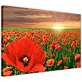 """RED POPPY FIELD WALL ART CANVAS PRINTS FRAMED PICTURES HOME DECORATION MODERN FLORAL ART POSTER SIZE: A3 - 16"""" X 12"""" (40CM X 30CM)"""