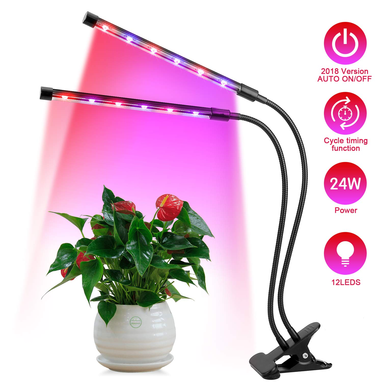 AGM Plant Light, Led Plant Light 24W 12LEDs Indoor Plants Light 3 Modes Timer 4H/8H/12H 4 Levels Dimmable with 360°Adjustable Flexible Gooseneck for Plants Growing Hydroponic in office/Home/Garden[Dual-head; Red: 8, Blue: 4] (24W) AGM EU
