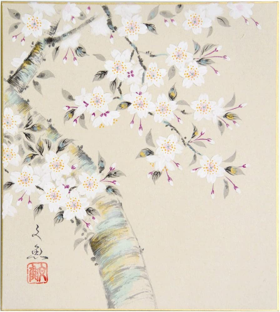色紙4枚セット 四季の彩り 中谷文魚