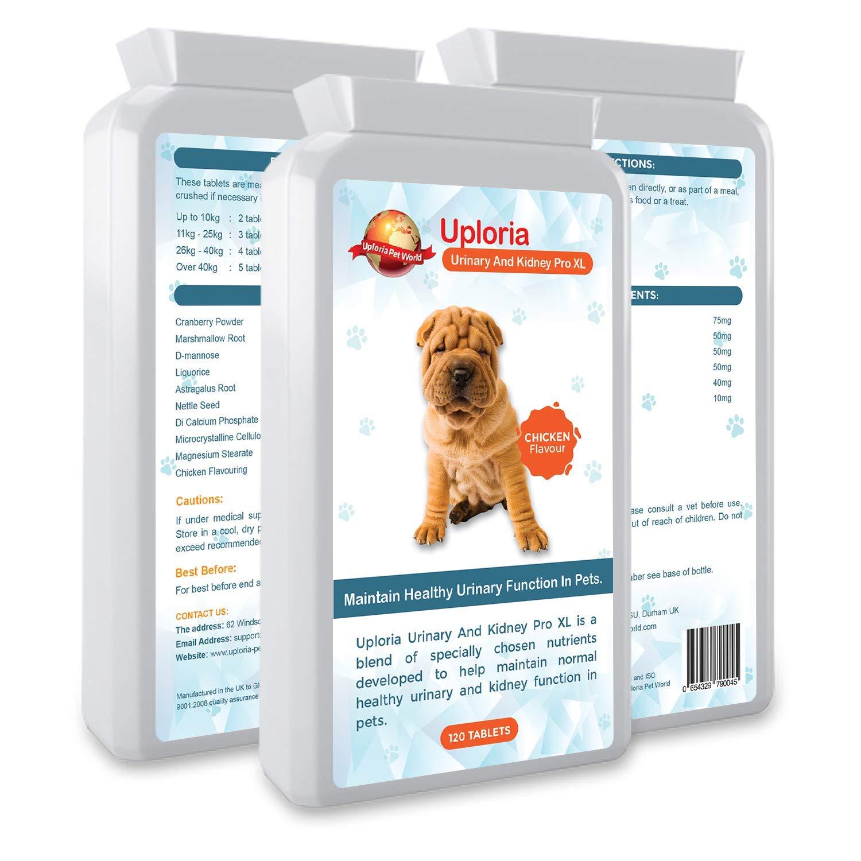 Uploria Pet World Antibióticos para ITU para Perros Y Gatos Apoyo Urinario Y Renal Diario para La Salud del TU En Gatos: Amazon.es: Productos para mascotas