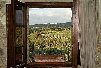 Tuscan Vineyards Wallpaper Wall Mural